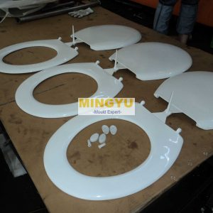 Toilet seat cover mould