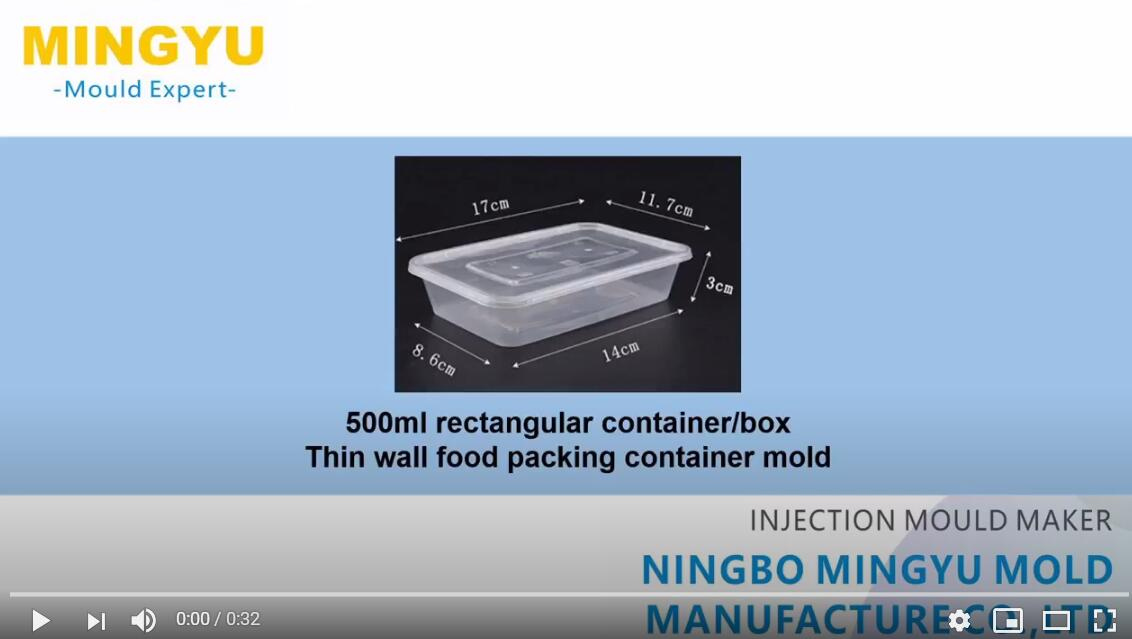 500ml rectangular food container mold running video