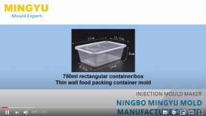 750ml take away food packing box mold video